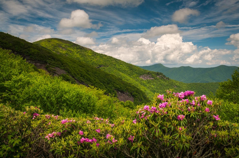 North Carolina's Mountains!  Comprehensive Ophthalmologist Wanted for Partnership.
